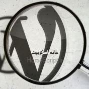 ۸ هک کاربردی برای بهبود جستجوی وردپرس